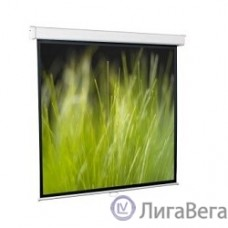 ScreenMedia Goldview [SGM-4304] Экран настенный, 183x244 MW, 4:3, 4-уг. корпус