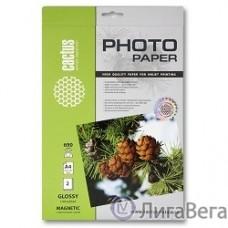 CACTUS MGA46902 Фотобумага с магнитным слоем Cactus CS-MGA46902 глянцевая, А4, 690 г/м2, 2 листа