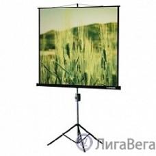 Lumien Eco View LEV-100101 Экран на треноге 150x150 см  1:1 напольный рулонный