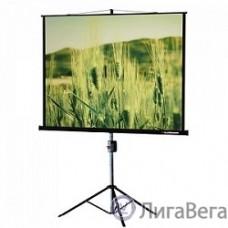 Lumien Master View LMV-100107 Экран на треноге (153х203), рабочая область (147х197) 4:3 напольный рулонный