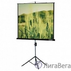 Lumien Eco View LEV-100102 Экран на треноге 180x180 см 1:1 с возможностью настенного крепления