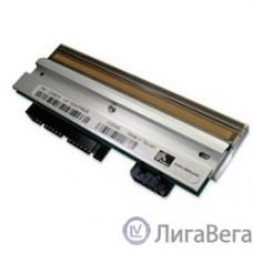 Zebra [P1037974-010] Печатающая головка 203 dpi для принтеров ZT200