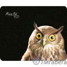 Dialog PM-H15 owl черный с рисунком совы, Коврик для мыши - размер 220x180x3 мм