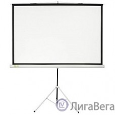 Экран Cactus Triscreen CS-PST-124x221 124.5 x 221см 16:9 напольный рулонный белый/черный
