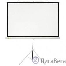 Экран Cactus Triscreen CS-PST-127X127 127 x 127см 1:1 напольный рулонный белый (черная рамка)