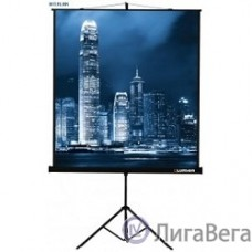 Lumien Master View LMV-100109 Экран на треноге 203x203 см 4:3 напольный рулонный