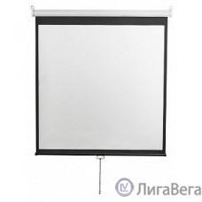 Digis Optimal-D [DSOD-1107] Экран настенный, формат 1:1, 135″, 248x250, рабочая поверхность 240x240, MW