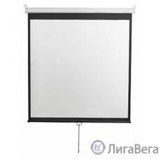 Digis Optimal-D [DSOD-1105] Экран настенный, формат 1:1, 112″, 206x209, рабочая поверхность 200x200, MW