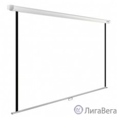 Экран Cactus WallExpert CS-PSWE-240x150-WT 150x240 см 16:10 настенно-потолочный рулонный белый