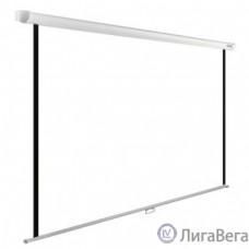 Экран Cactus WallExpert CS-PSWE-220x138-WT 138x220 см 16:10 настенно-потолочный рулонный белый