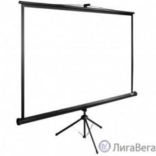 Экран Cactus TriExpert CS-PSTE-160x160-BK 160x160 см 1:1 напольный рулонный